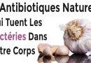 11 antibiotiques naturels qui tuent les bactéries dans votre corps